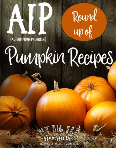 30 AIP Pumpkin Recipes