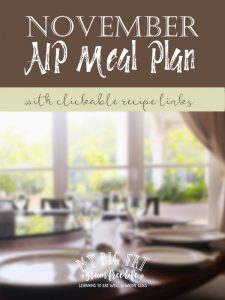 November AIP Meal Plan