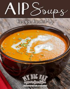 49 AIP Soups!