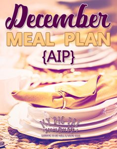 December AIP Meal Plan